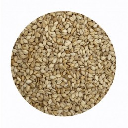 Sésamo natural La Salmantina a granel (paquete)