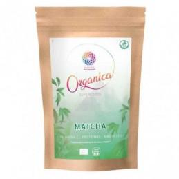 Matcha ecologica en polvo Organica 100g