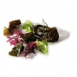 Ensalada de algas Portomuiños 25g