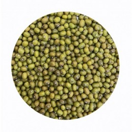 Soja verde Ecológica La Salmantina a granel (Paquetes)