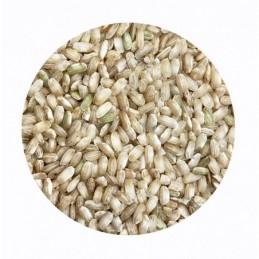 Arroz redondo integral Ecológico BIO BioSpirit a granel (Paquetes)