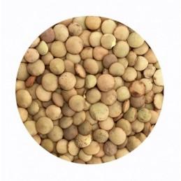 Lentejas castellanas BIO BioSpirit a granel (Paquetes)