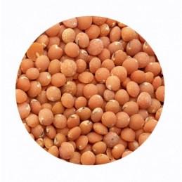 Lentejas rojas BIO BioSpirit a granel (Paquetes)