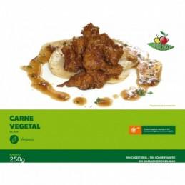 Carne Vegetal Vegesan 250gr